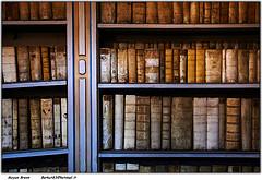 Books by Moyan Brenn